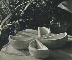 1973. Цветочница Долька / Puķupods. Daiviņa