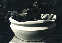 1974. Цветочница с лепным краем / Puķupods ar veidotu malu