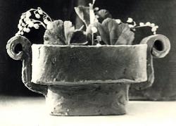 Цветочница с волютами. Эскиз / Puķupods. Mets