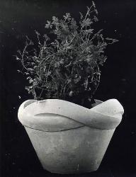 1977. Цветочница с плетеным краем / Puķupods ar izvītu malu